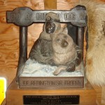 The first place trophy from the Iditarod.
