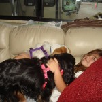 Early in the morning, the dogs piled on Lizzie.