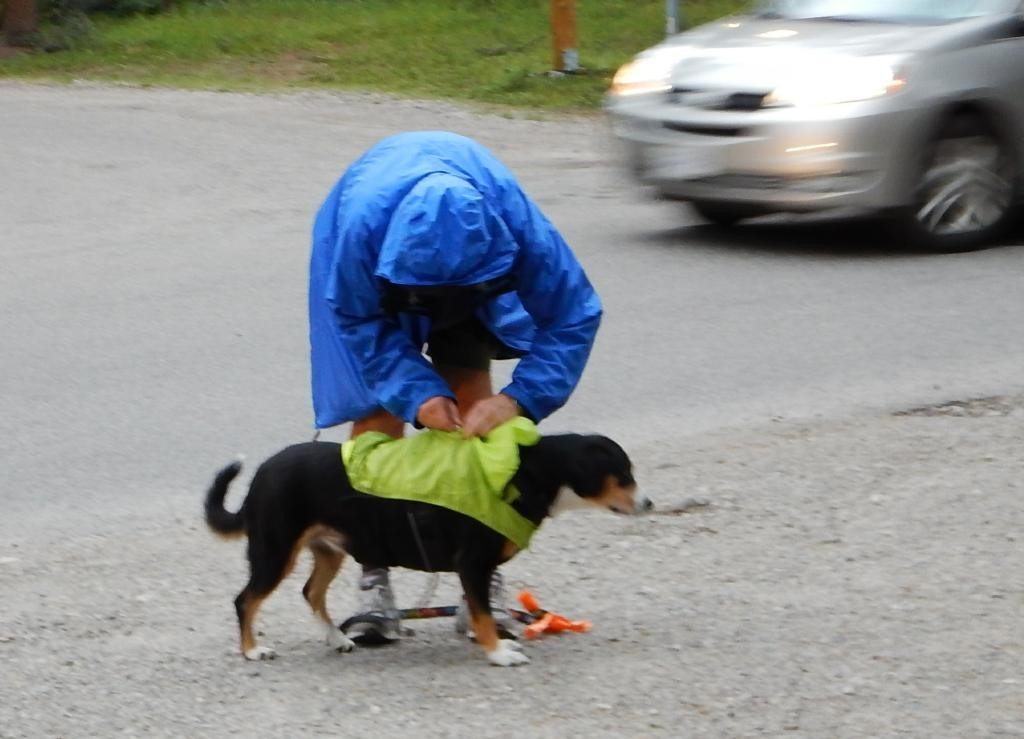 This is just cute. But I can't imagine my dogs putting up with a coat. Besides, they love the towel rub back in the RV.