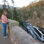 Later that afternoon we drove into the park and stopped at Gibbon Falls.
